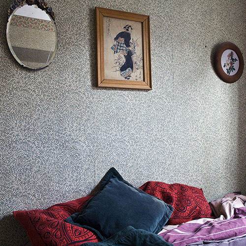 At Home with Morris (Cushions on bed)