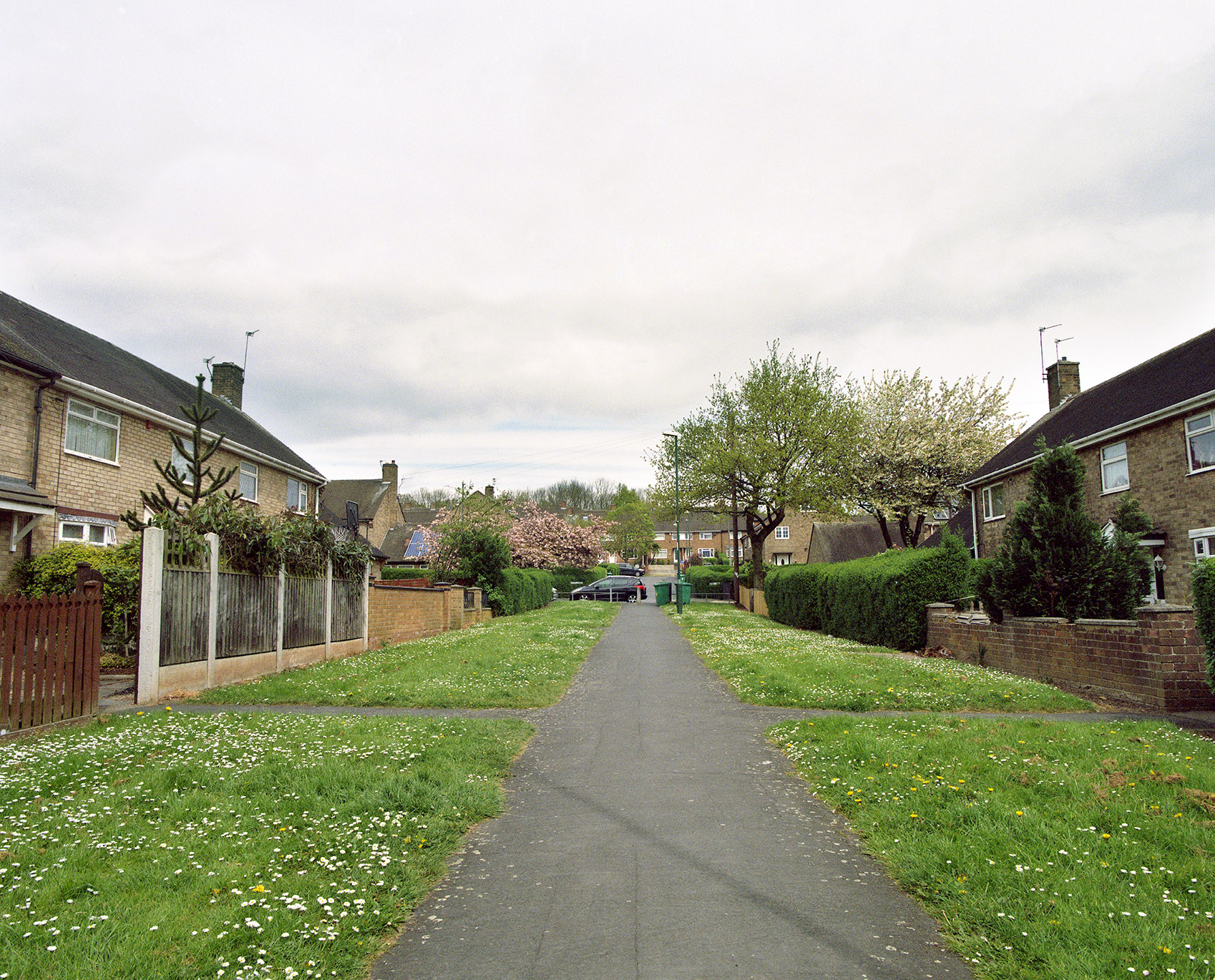 Image of a pathway between housing